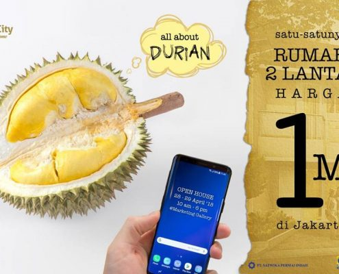 Open House Palm CIty Durian